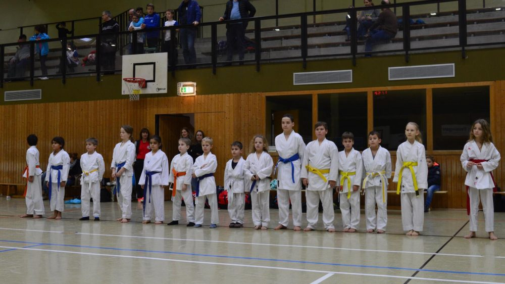Karate Winter Games