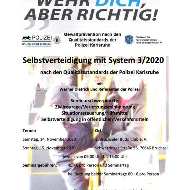 Selbstverteidigung mit System 3/2020